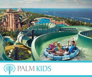 Palm Kids 300x250pix_banner.jpg