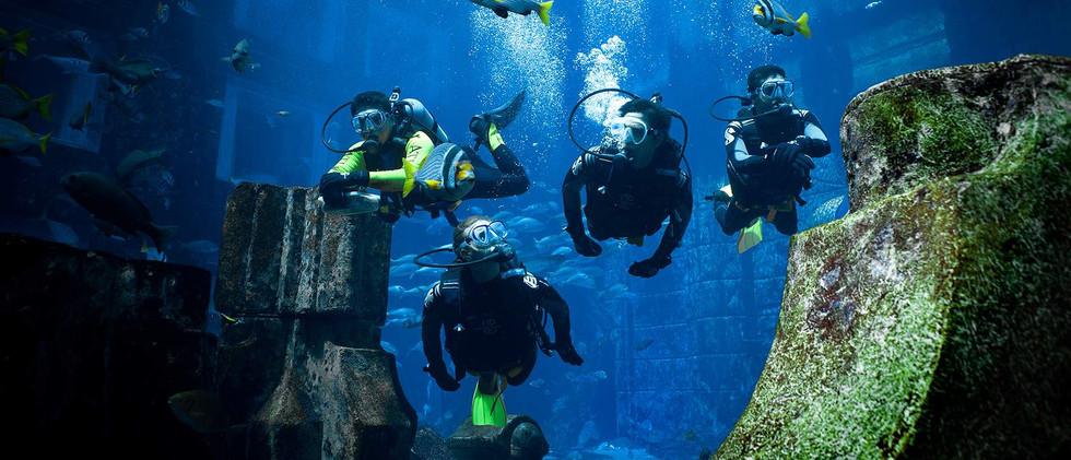aquariumdive-atlantisdiveexplorer-main.j