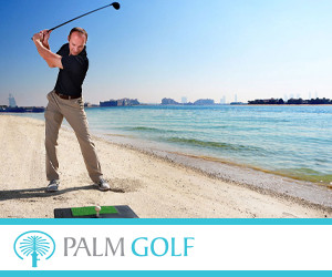 Palm Golf 300x250pix_banner.jpg