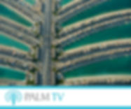 Palm TV 300x250pix_banner.jpg