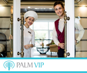 Palm VIP 300x250pix_banner.jpg