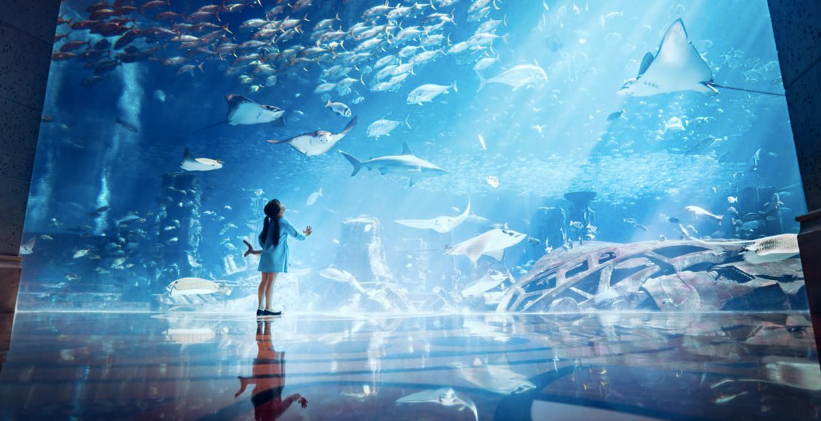 Lost Chambers Aquarium3.png