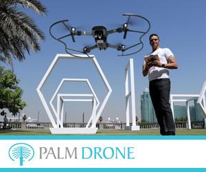 Palm Drone 300x250pix_banner.jpg