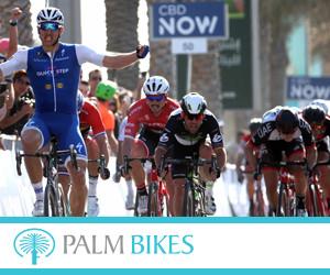 Palm Bikes 300x250pix_banner.jpg