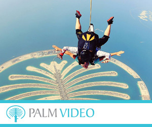 Palm Video 300x250pix_banner.jpg
