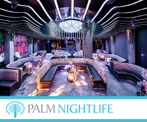 Palm Nightlife 300x250pix_banner.jpg