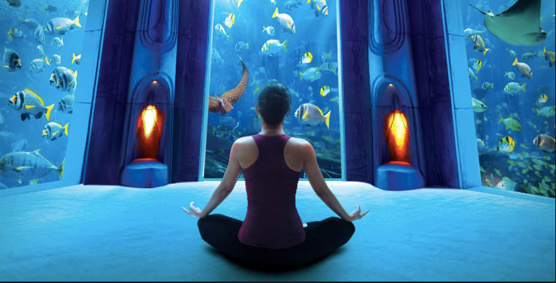 Lost Chambers Aquarium.png