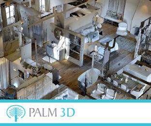 Palm 3D 300x250pix_banner.jpg