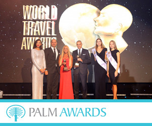 Palm Awards 300x250pix_banner.jpg
