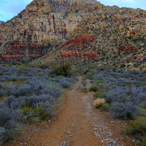 Wagon Road to the Spring