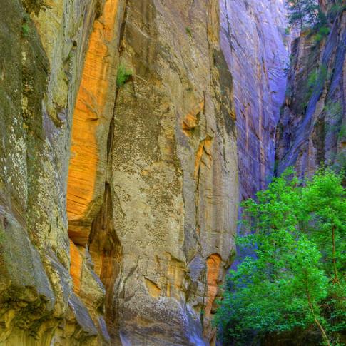 Canyon's Depth