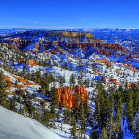 Bryce Canyon Rim 2