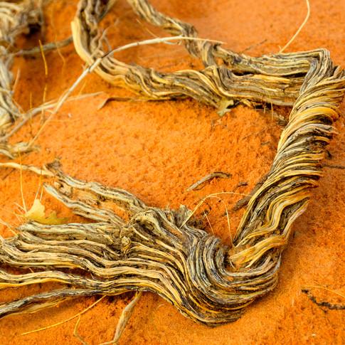 Desert Rope