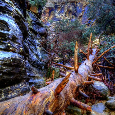 Ice Box Canyon 1