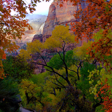 Zion Foot Path