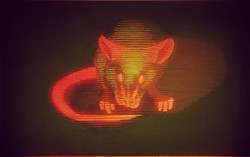 GFP mouse (SOLD)