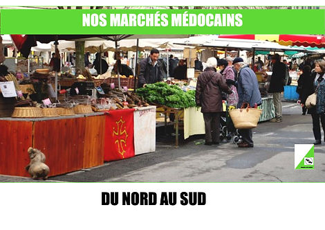 Les Marchés Médocains 1 .jpg