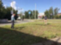 наш газон.JPG