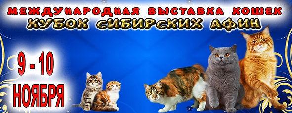 1ea70a4fe195ba082349ac72af82d1de.jpg