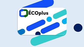 ecoplus33.png