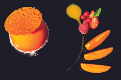 photographe-artsculinaire-dessert-portov