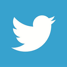 twitter-bird-white-on-blue.jpg