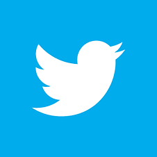 twitter-bird-white-on-blue.png