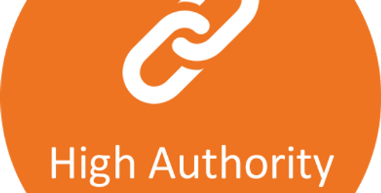 100 High Authority Backlinks