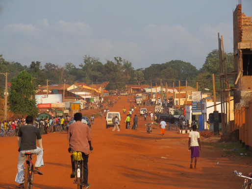 Western Equatoria residents call for grazing restrictions