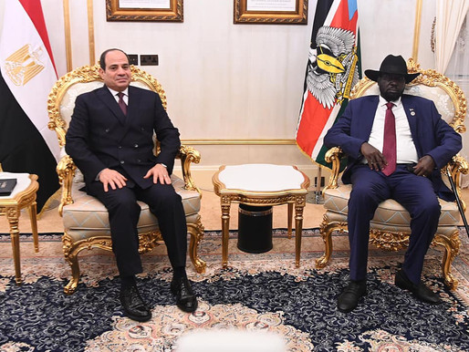 EGYPTIAN VISIT: development, regional stability and water dominate talks