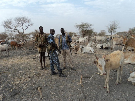 Unity State youths attack Pan-Thaan cattle camp in Pakam county, Lakes state