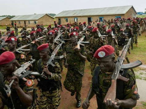 Top security agents calls for quick security forces graduation.