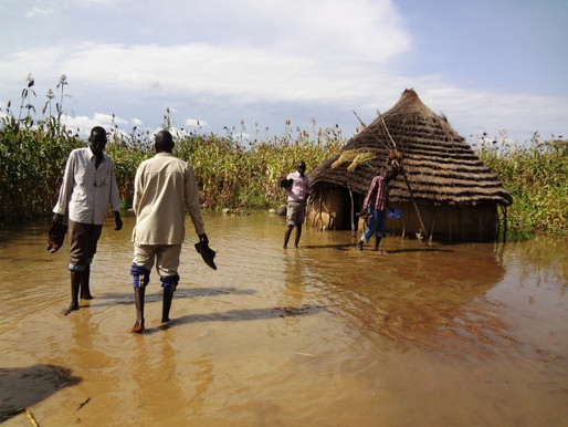 Authorities warn of future famine in Upper Nile State