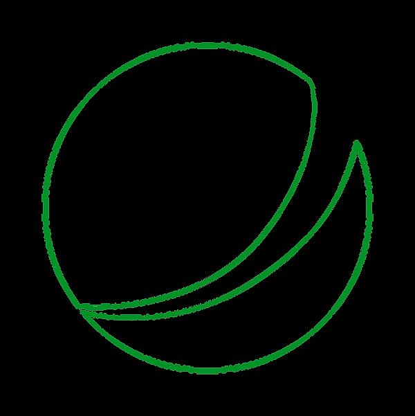simbolo_wex__outline_verde.png