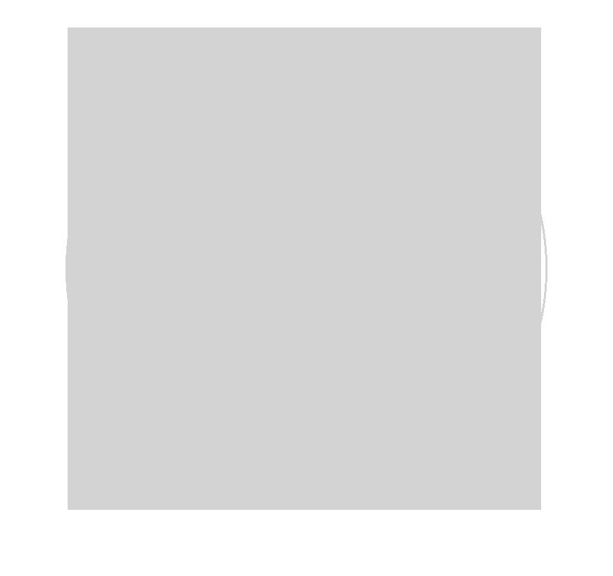 simbolo_wex__outline_marcadagua.png