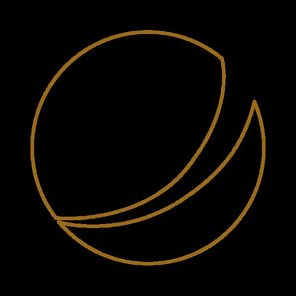 simbolo_wex_outline_torrado.png