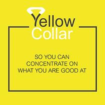 Yellow Collar Social