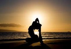 yogatre_01.jpg