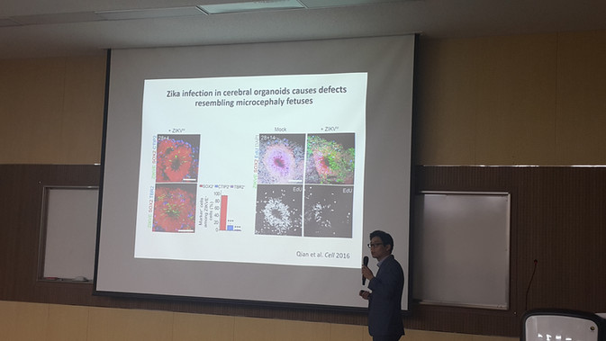 Organoid Conference In Busan National University