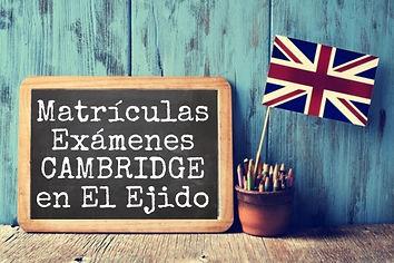 matrículas_El_Ejido.JPEG