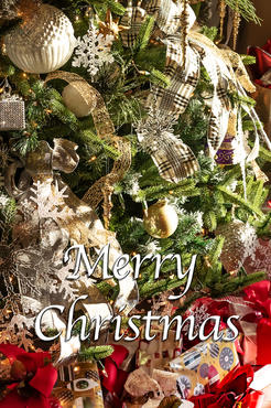 Merry Christmas 2019 g.jpg