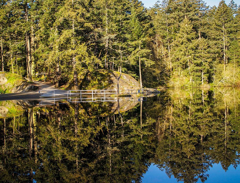 Lake reflections - Thetis Lake beach