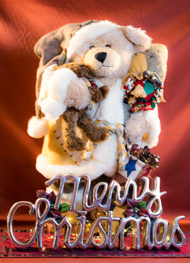 Bear with Merry Christmas sign.jpg