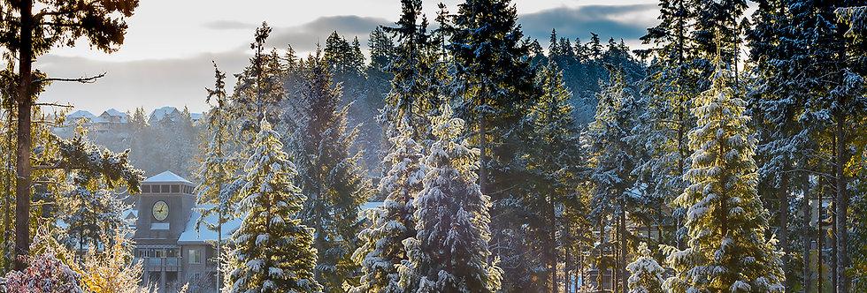 Snowy Village - Seasons Greetings