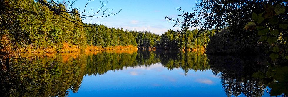 Lake reflections - Thetis Lake in Fall