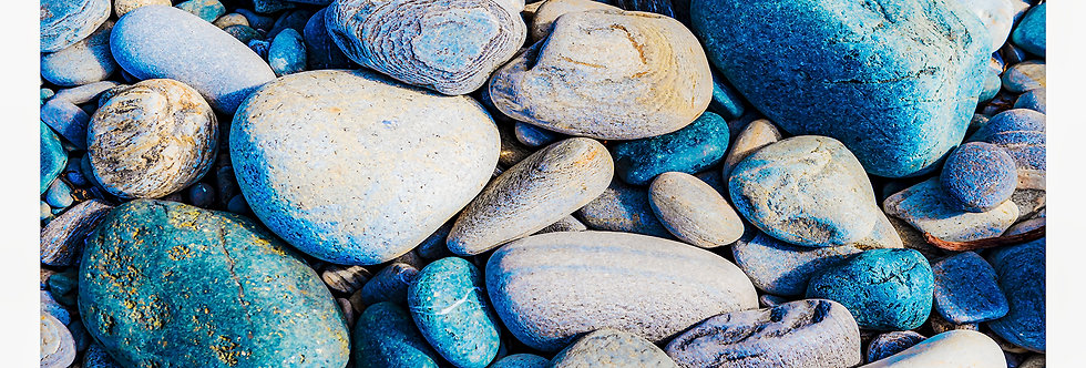 Rocks on Botanical Beach