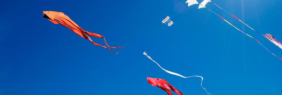 Sunny day Kites