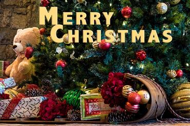Bear with sled Merry Christmas.jpg