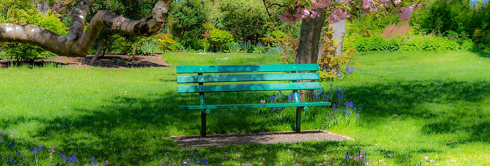 A quiet place in the park