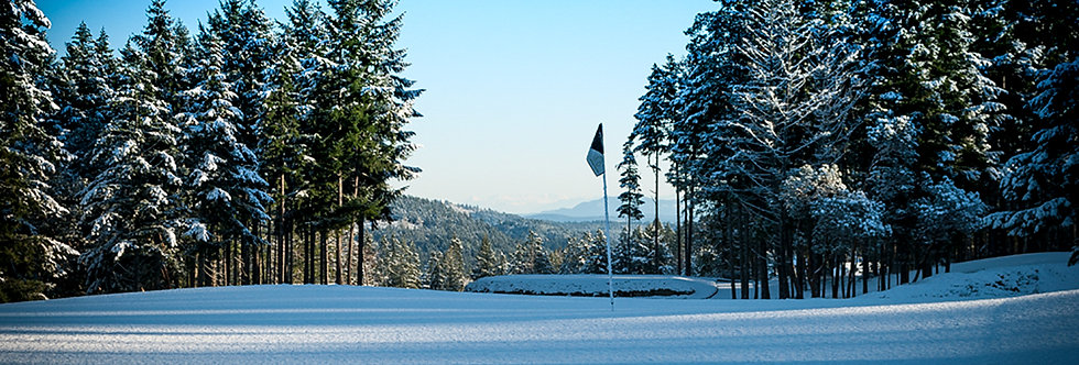 Golf Flag in Snow